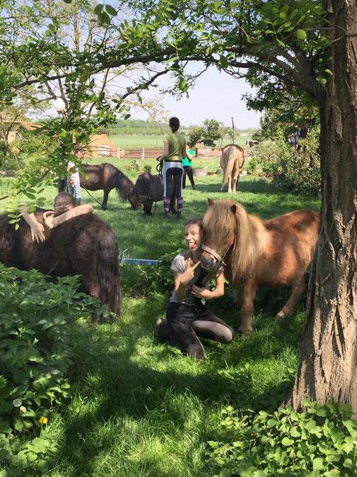 Mädchen mit Pferden, Jugendreitwoche am Reitstall Althof