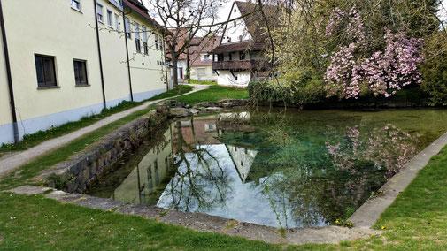 Der Löffelbrunnen, einer von 4 Kartquellen in Langenau...