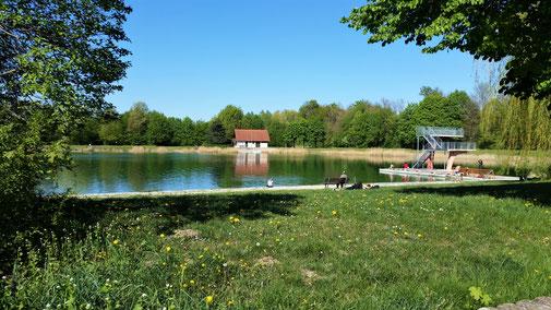 In Gundelfingen gibt es einen herrlichen Badesee...
