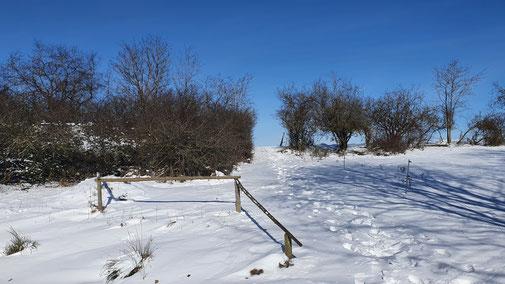 Blauer Himmel, weißer Schnee...