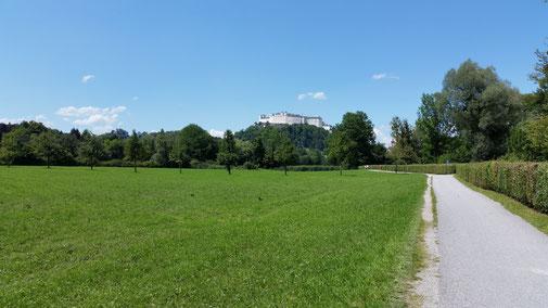 Endlich taucht sie auf... Salzburgs Wahrzeichen