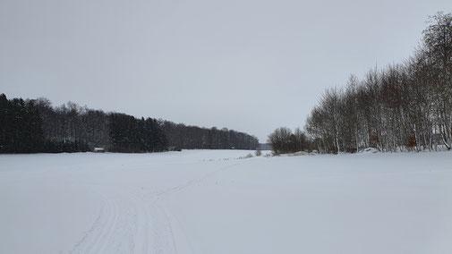Eisregen - und die Langläufer sind wie vom Erdboden verschluckt...