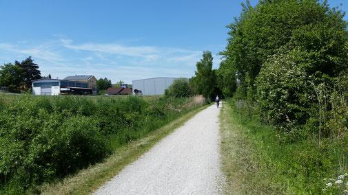 Radweg Richtung Rotthalmünster