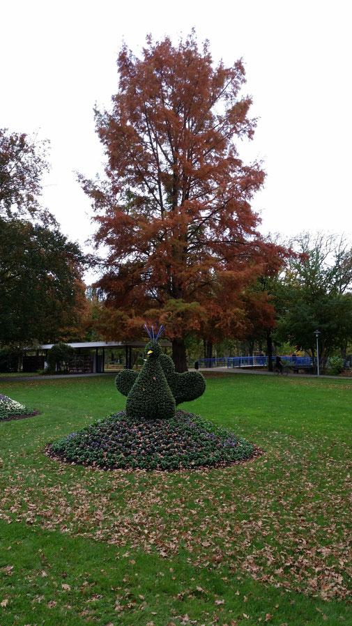 Herbststimmung im Kurpark