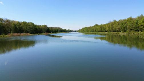 Ruhig, still... und traumhaft schön... die Donau...