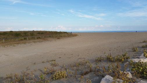 Viel zu viel Sand - und auf dem ganzen Strand nur 3 Badegäste gezählt...  So schön kann ein Badestrand im Oktober sein...