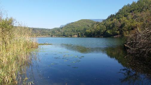 Montiggler See, hier ist noch Natur pur - einfach nur schön