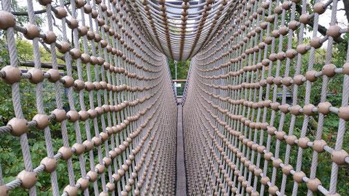 Eine schwabbelige Netzhängebrücke steigert die Adrenalinausschüttung...