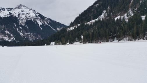 Das Wetter macht schneeblind... die Loipe ist echt gut - jedoch in dem Einheitsweiß nicht auszumachen...