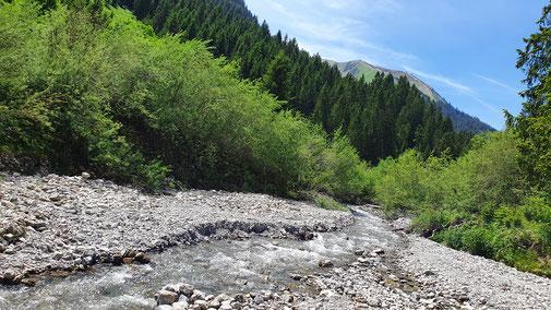 Der Talbach im Berwanger Tal...