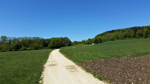 Auf dem Weg zum Kornberg...