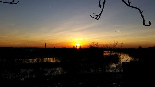 Sonnenuntergang Aschaffenburg / Main