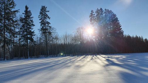 Bevor die Sonne versinkt will ich mich auf den Heimweg machen...