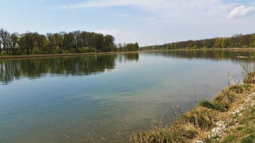 Ganz schön breit - die Donau...