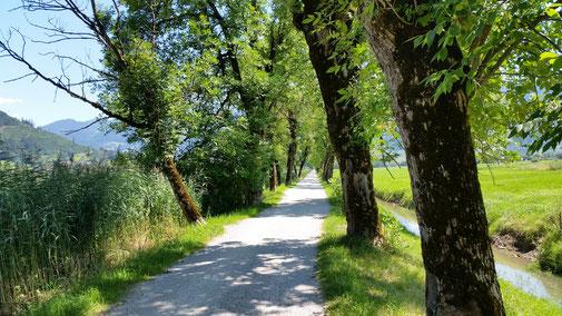 Radweg in Richtung Bruck...