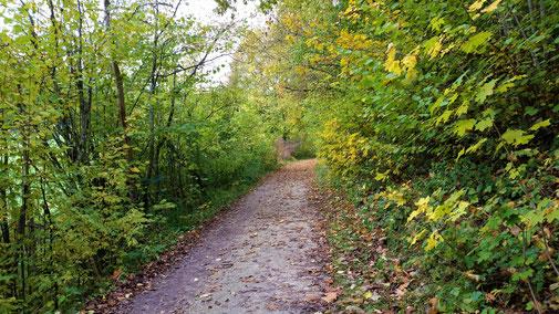 Es wird Herbst im Lonetal...