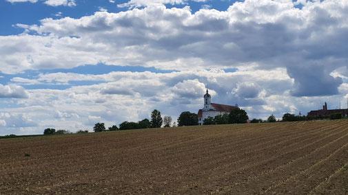 Blick auf die Klosterkirche Oberelchingen...