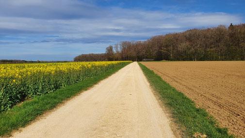 Irgendwo in der Nähe von Luizhausen...