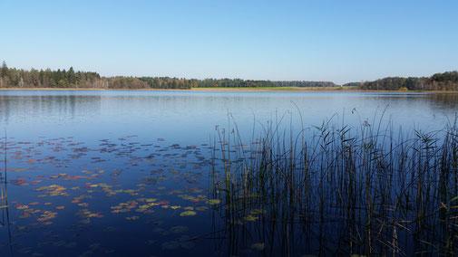 Der Schreckensee