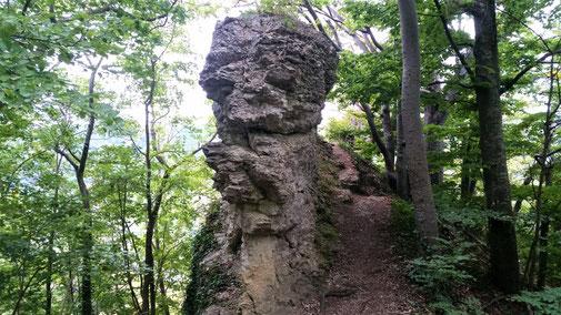 Blick auf den Kahlenstein...