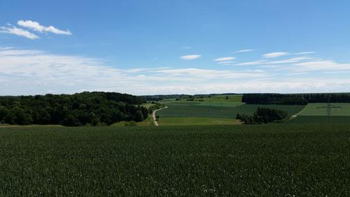 Landschaft wohin das Auge reicht (Weilertalweg Richtung Vorderdenkental)