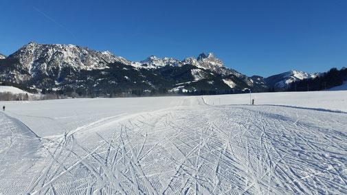 Was wünscht man sich mehr... Im Hintergrund von links: Lumberger Grat, Füssener Jöchle, Läuferspitze, Gimpel, Rote Flüh, Ditzel (mini) und Hahnenkamm