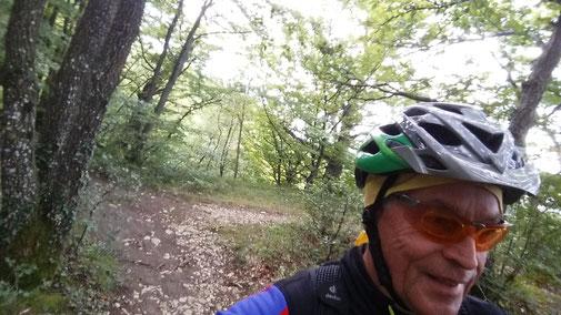 Eine schlüpfrige Angelegenheit - die nassen Waldwege