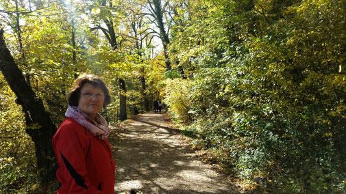 Der Fußweg bergab nach Hohenstaufen...