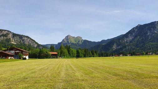 Blick von Grän auf den Aggenstein...