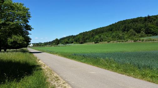 Ich nehme heute den schön geteerten Radweg...