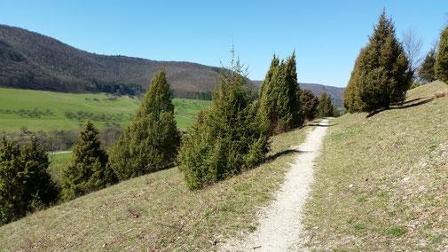 Reichenbach Richtung Schlat (Haarberg - Wasserberg)