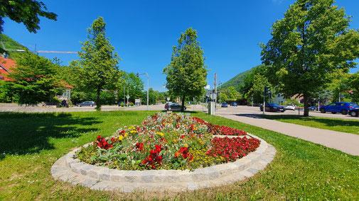 Blumenbeet in Bad Ditzenbach