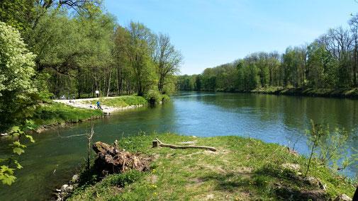 Links die Brenz, rechts die Donau, geradeaus Sackgasse...