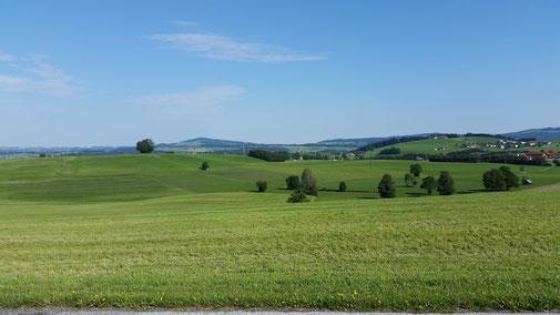 Über sanfte Hügellandschaften geht es zur Salzburger Seenlandschaft...
