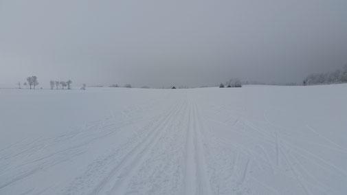 Kurz vor dem Spielplatz Aymer, Schwäbische Alb