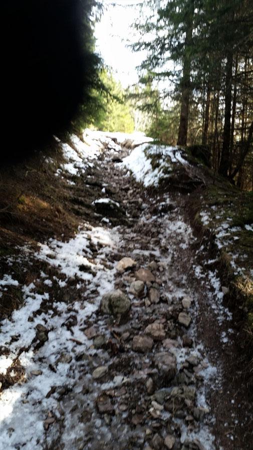 Es hat einfach zu wenig Schnee... Also Ski abschnallen und tragen...