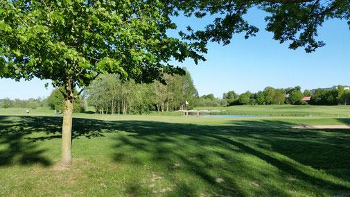 Blick auf den Beckenbauer Golfplatz...