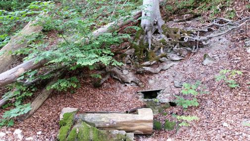 Schiebend passiere ich den Brunnen, der momentan jedoch nicht wirklich tropft...