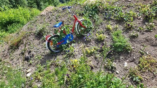 Diese Rad fährt alleine steil bergauf - das will ich haben...