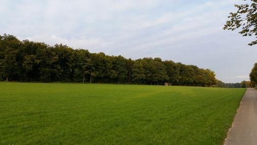 Im Hintergrund Nellingen (noch nicht wirklich sichtbar)