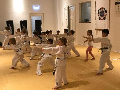 Taekwondo-Unterricht für Kinder von 4-5 Jahren