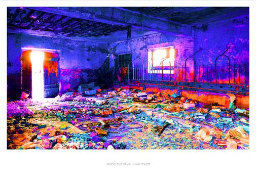 Deko Bild  »Static but alive« no. stba 112P