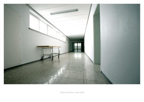 Deko Bild  »Static but alive« no. kh 001P