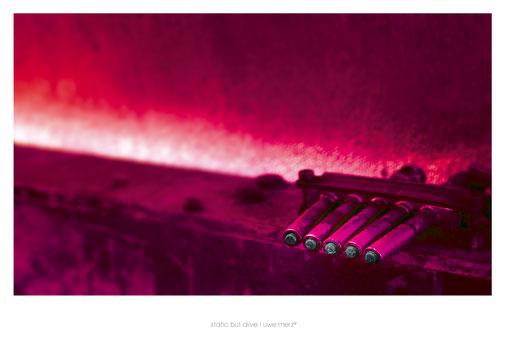 Deko Bild  »Static but alive« no. stba 122P