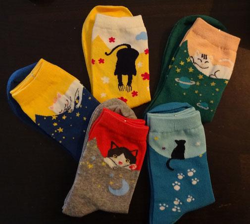 1 von 5 Katzen-Socken-Paaren