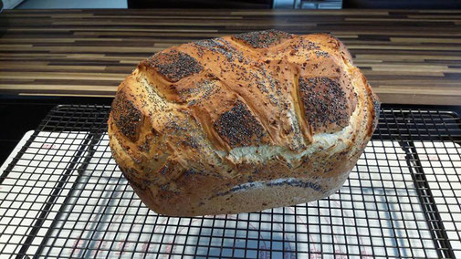 Backe doch mal ein schnelles Brot ohne Gehzeit. Hier findest du das passende Rezept für ein Brot ohne Gehzeit. Schnell gemacht und ultra lecker ist dieses Brot aus dem kleinen Zaubermeister oder dem Ofenmeister von Pamperechef #pamperechef® #Martina_Ziehl