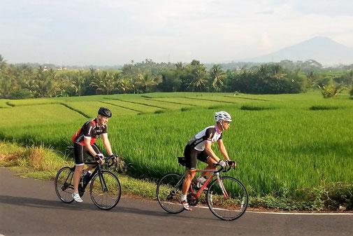 Rennradtouren auf Bali