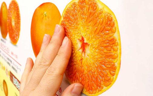 触れると果肉の盛り上がりが分かります!