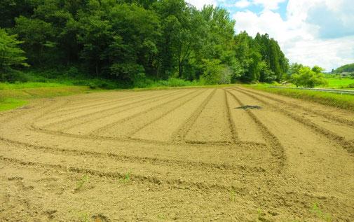 農地や土地開発に関する申請業務