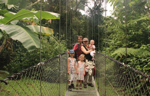 Hängebrücke Mistico Arenal Hanging Bridges Park Dschungel